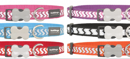 Red Dingo Dog Collar with Reflective Zig Zag design